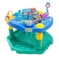 exersaucer rental maui